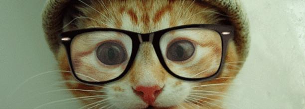 brillen1