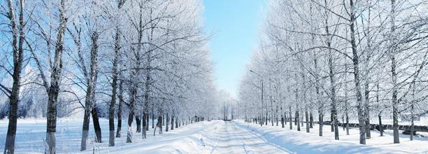 winter10101