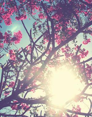 spring202